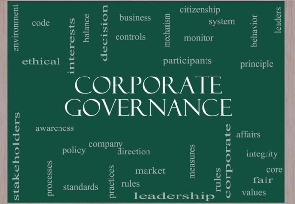 A Review of Corporate Governance Codes in 2014